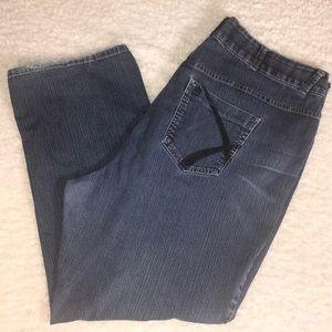 Lane Bryant Jeans Straight 24